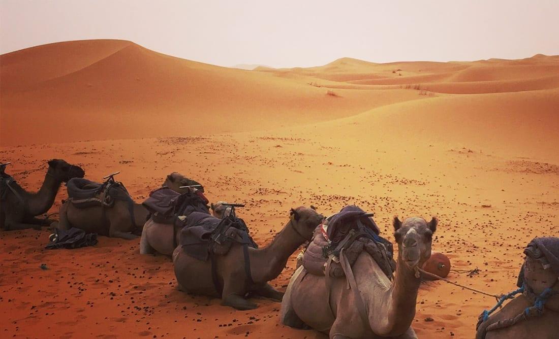 Marrakech-viajes-fotograficos
