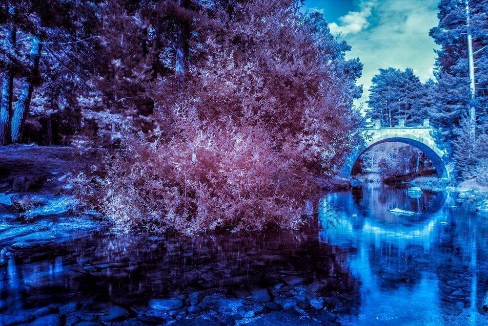 fotografia-infrarrojaii